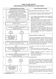 Issue Resolution Procedure Flow Chart Lecture Notes Lecture 1 Supplement Notes Health And