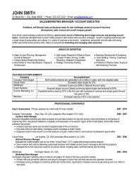 Resume Template Sample Resume For Sales And Marketing Position