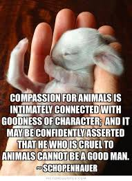 Animal Cruelty Quotes & Sayings | Animal Cruelty Picture Quotes via Relatably.com