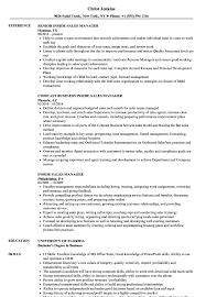 Sales Manager Resume Inside Sales Manager Resume Samples Velvet Jobs 18