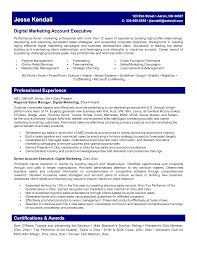 digital marketing executive resume sample digital marketing resume digital marketing executive resume sample