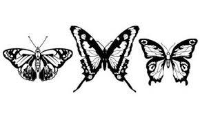 優雅な雰囲気を感じられる蝶のベクター素材まとめ25 High Quality