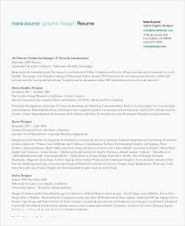 Traditional Resume Examples Weraz