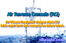 Obat Virus MERS Herbal