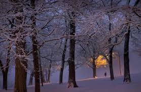 landscape maintenance richmond va lovely more than 90 photos of snow in the richmond area and