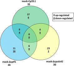 Venn Diagram Plants Venn Diagram Of Differentially Expressed Plant Genes O Open I