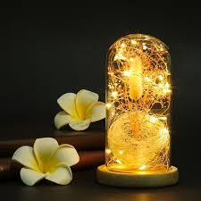 diy led lighting glass dome dried gypsophila flowers vase with wooden base battery powered small night