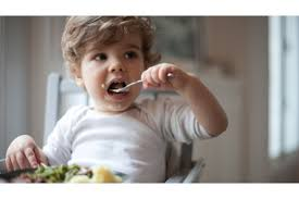 Development Milestones Your Child 18 To 24 Months