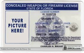 To Fast-track Weapons Carry Process Could - Florida's Other Gun Handbags Permit States Concealed Spread