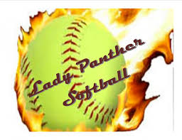Image result for panther softball