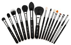 this is the number one makeup brush brand that people turn to when they are looking for something just like mac without the