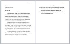 Apa Format Template Apa Essay Paper Senate Term Length Apa Essay Format