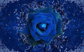 Blue Rose Wallpaper For Desktop Full Size