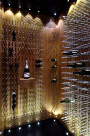 Exciting Wine Cellar Lighting Ideas Contemporary - Best idea home ...