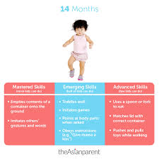 14 Month Old Baby Milestones Chart 14 Month Old Development Chart Best Picture Of Chart