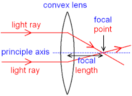 convex lens focal point length gif gcse physics what are ray diagrams what is the focal length 312 x 229