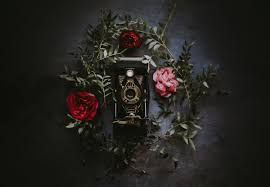 Famous Still Life Photographers Photography Art Inspiring Quotes By Famous Photographer Ansel Adams