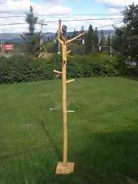 pole coat racks are made of lodgepole pine