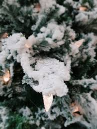 snow covered christmas tree with lights
