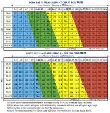 Accu Measure Body Fat Chart Pin On Blue Body