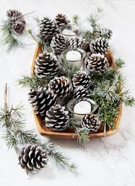when you e back let s create some beautiful pinecone decorations for the holidays and new year