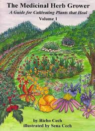 Small Picture Medicinal Herb Garden Design Plans Grow a medicinal herb garden