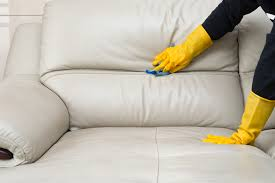 how to remove mildew mold from furniture