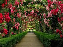 flower gardens pictures. Flower Gardens Pictures F