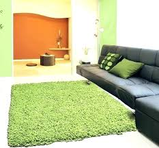 fun area rugs fun area rugs fun area rugs best floor area rugs images on rugs