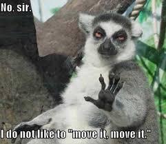 Animal House Funny Movie Quotes. QuotesGram via Relatably.com