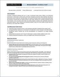 Leadership Examples Resume - Resume Sample