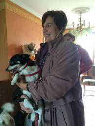 Ava Watkins on Twitter | Usa dog, Embedded image permalink, Winter jackets