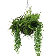 artificial forest foliage hanging basket on artificial forest fern green wall foliage with artificial forest foliage hanging basket blooming artificial