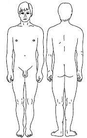 male front and rear view diagram patient Male Plug Diagram i52_l jpg 110 male plug wiring diagram