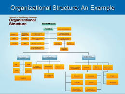 Non Profit Organizational Chart Examples Google Search
