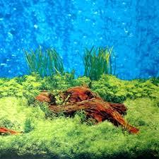 Fish Tank Wallpaper Ocean Aquarium Live Wallpaper Fish Tank