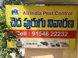 Top 50 Pest Control Services in Rajahmundry - Best Residential Pest Control  Services - Justdial