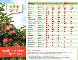 Apple Variety Chart Guide To Apple Varieties Ctcider
