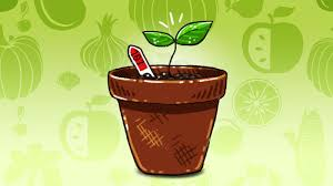 You Donu0027t Need A Green Thumb To Grow Bounty Of Fresh Vegetables Right In Your Backyard Or Balcony Whether Youu0027re Gardening Novice Just Want Start