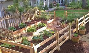 advantages and disadvantages of raised beds redeem your ground rygblog com