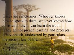 Laws Of Life Quotes Ancient Laws of Life Wisdom Truths and Wise words 76