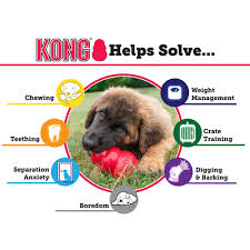 anxiety toys for dogs. Interesting Toys Kong Dog Toys In Anxiety For Dogs T