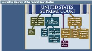 Interactive Diagram Of The Federal Court System The