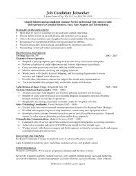 Sample Professional Summary For Customer Service Resume Refrence
