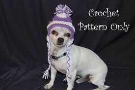 Free Crochet Dog Hat Pattern