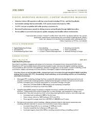 Marketing Experience Resume Digital Marketing Manager Free Resume Samples Blue Sky Resumes