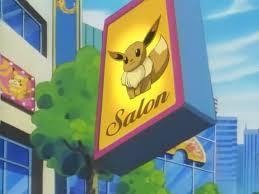 Výsledek obrázku pro pokemon salon
