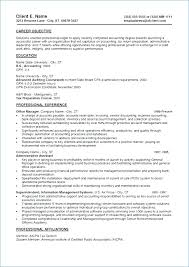 Resume Summary Statement For Examples 40 Sample Accounting Home Fascinating Resume Summary Statement Examples