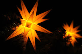 free images branch light plant sun night sunlight star leaf flower sparkler decoration orange autumn flame darkness lamp yellow lighting