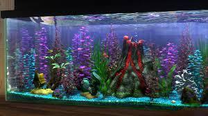 Fun Fish Tank Decorations Finding Nemo Aquarium Hobby The Gnomon Workshop News Aquariums